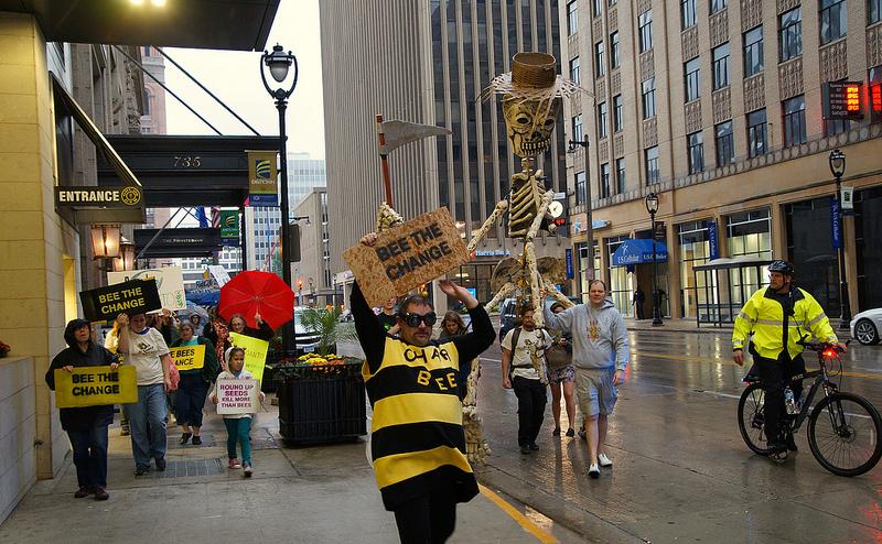 Manifestation anti-OGM à Milwaukee, dans le Wisconsin, aux Etats-Unis, en octobre 2013.