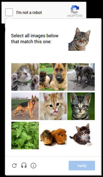 cat_captcha.0