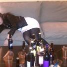 Image tirée du tournage d'un clip de sensibilisation aux dangers de l'alcool. (photo flickr/stopalcoholdeaths)