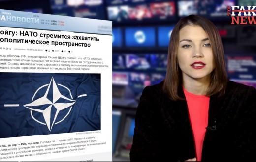 (Capture d'écran : StopFakeNews)