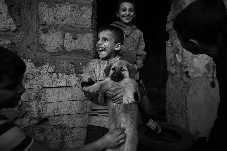 Les chiots restent dans l'école abandonnée. Les gamins viennent prendre soin d'eux tous les jours. (photo Baudouin Nach/8e étage)