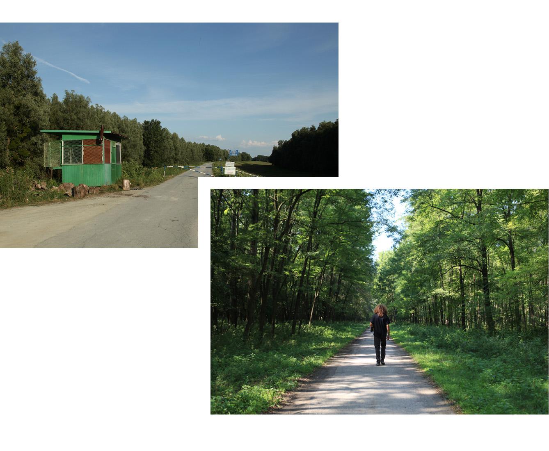 Pour accéder au Liberland, on peut emprunter la route qui longe le Danube puis, au bout de 4 km, s'enfoncer dans la forêt. (photo Elisabeth Blanchet/8e étage)