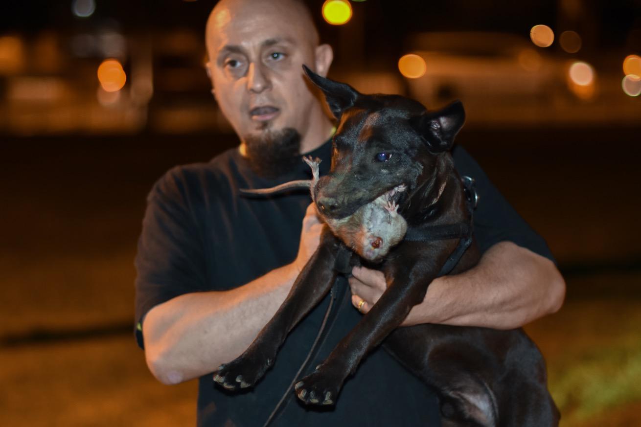Jimmy, accompagné de son chien Mighty. (photo Chloé Cohen/8e étage)