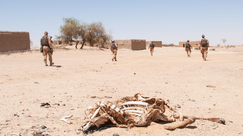 Une troupe suédoise au Mali. (Photo/Gustav Dahlgren/Forces armées suédoises)