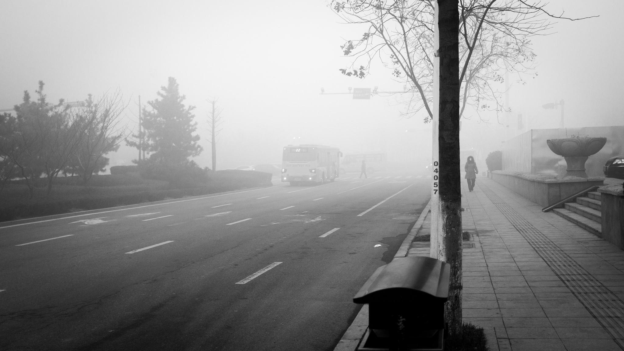 (Photo Flickr/Gauthier DELECROIX - 郭天)