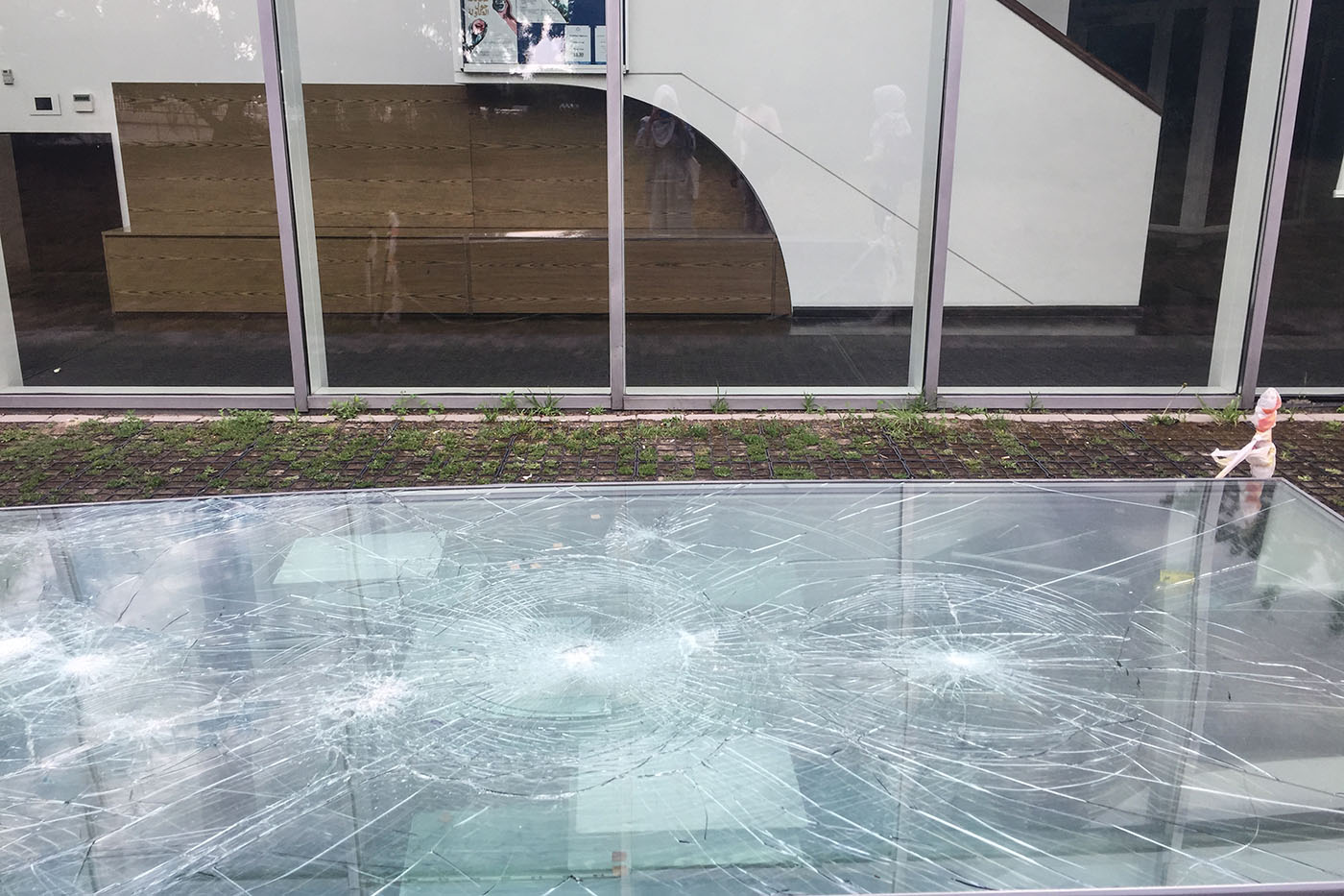 Les vitres du Centre de la Culture musulmane de Varsovie.  (Photo Capucine Japhet/8e étage)